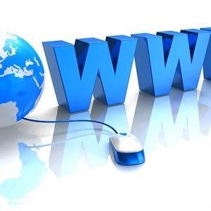 Webshop, Website of OnePager op maat