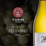 Torri 420 Pecorino Abruzzo DOC Bio wit